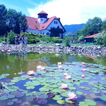 vizită scurtă la Colțești și Alba Iulia