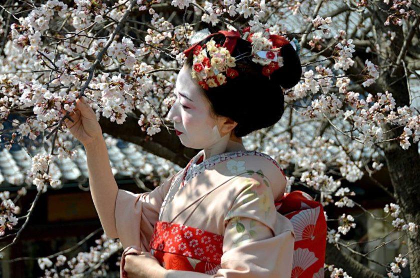superblog-japonia-024-1024x678